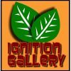 Ignition Gallery